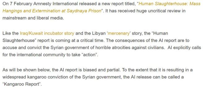 fake-news-week-amnesty-international-targets-syria-with-weaponized-human-rights-propaganda