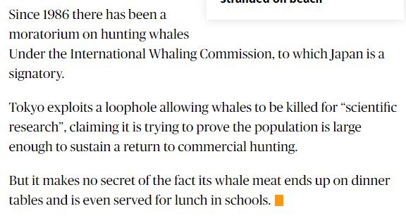 japan-slaughters-more-than-300-whales-in-globallycriticised-annual-antarctic-hunt-a3503666