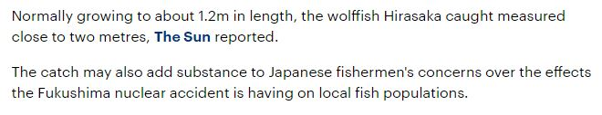 japanese-fisherman-reels-massive-fish-caught-coast-japan-not-far-site-fukushima-nuclear-plant-accident