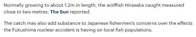 japanese-fisherman-reels-massive-fish-caught-coast-japan-not-far-site-fukushima-nuclear-plant-accident