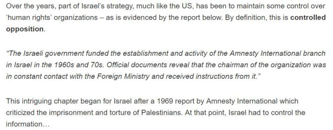 revealed-how-israel-made-amnestys-local-branch-a-front-for-foreign-ministry